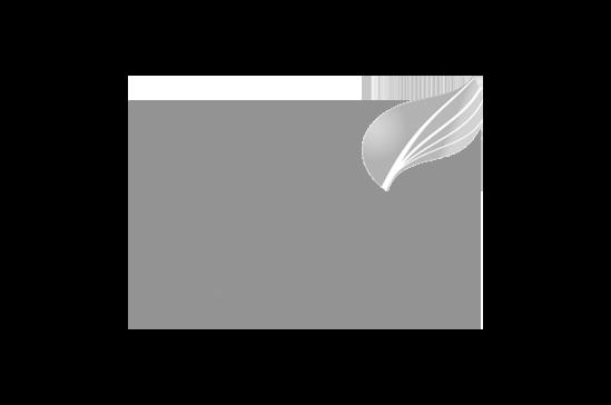 Cato-Bolam